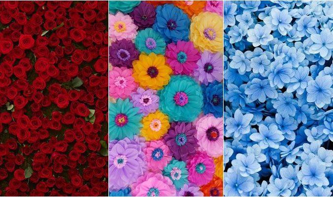 Papéis de parede de flores