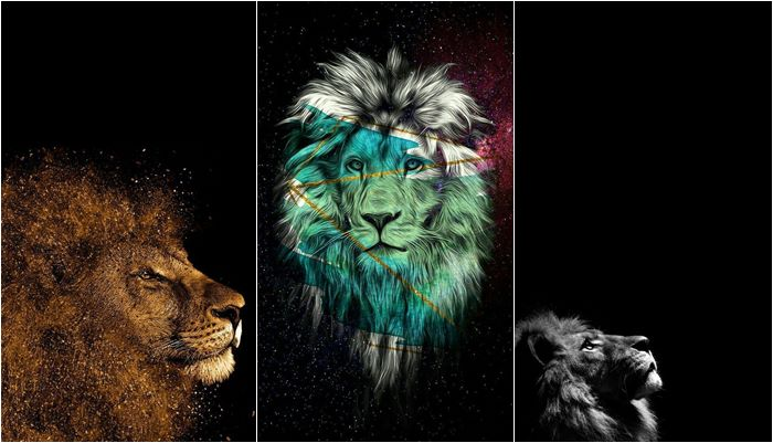 Papéis de parede de Leão