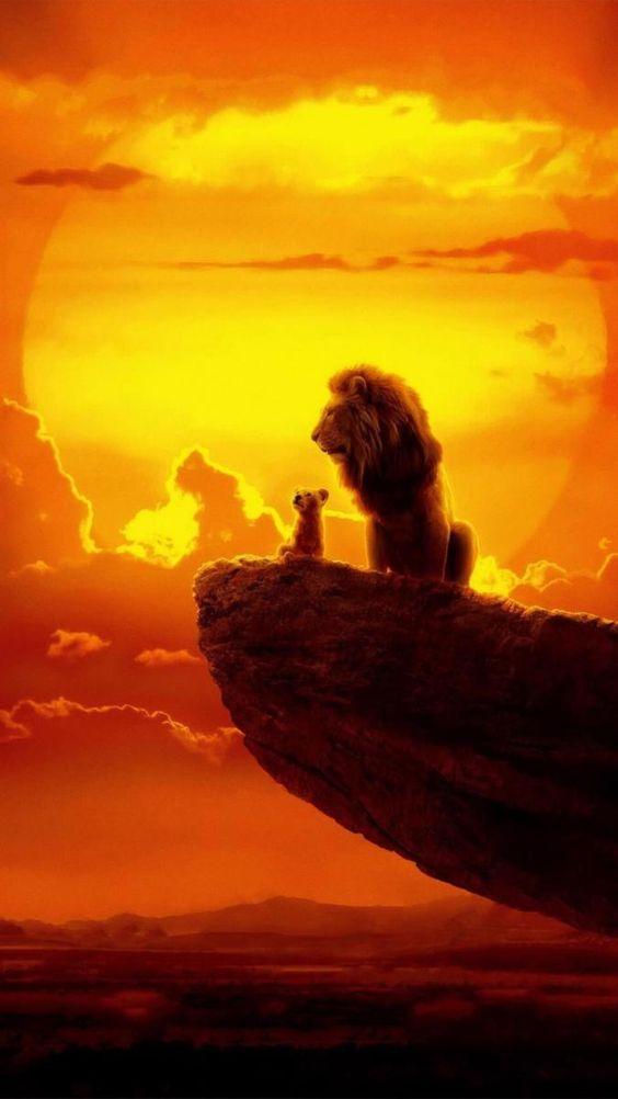 Papéis de parede do Rei Leão (6)